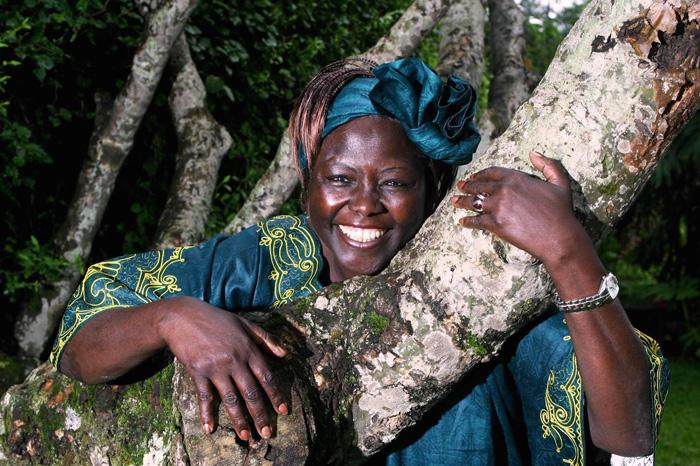 Wangari-Maathai-Muta