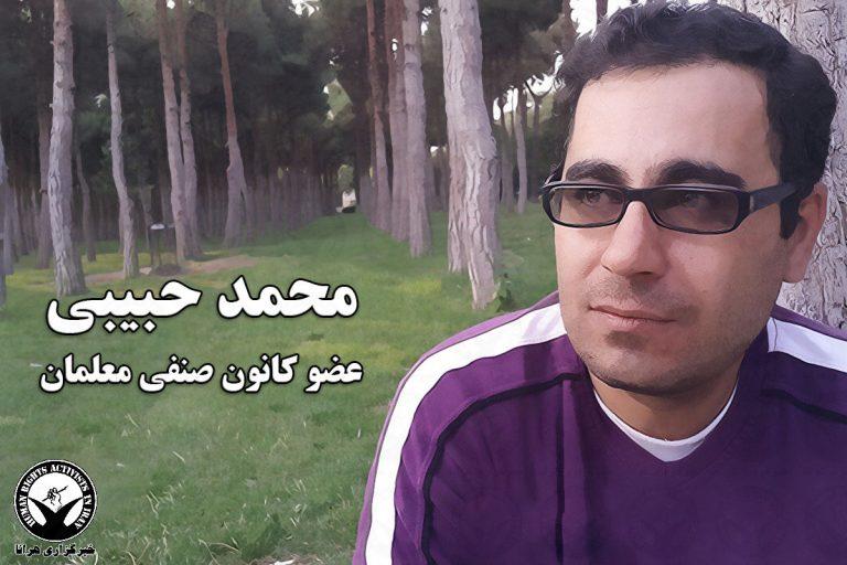 mohammad-habibi-768x512